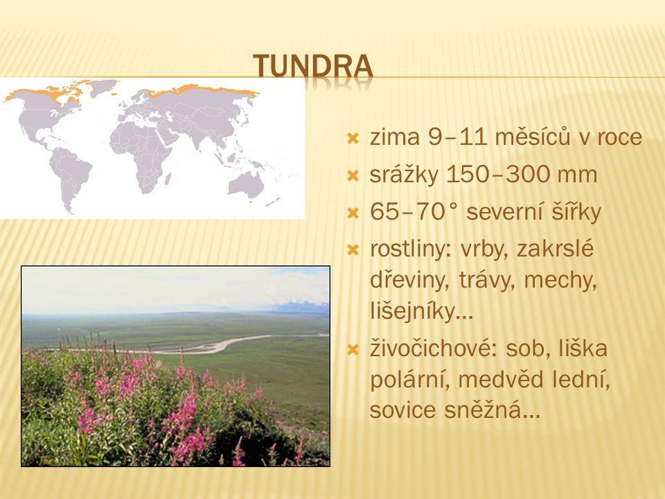 Tundra zima 9–11 měsíců v roce srážky 150–300 mm 65–70° severní šířky