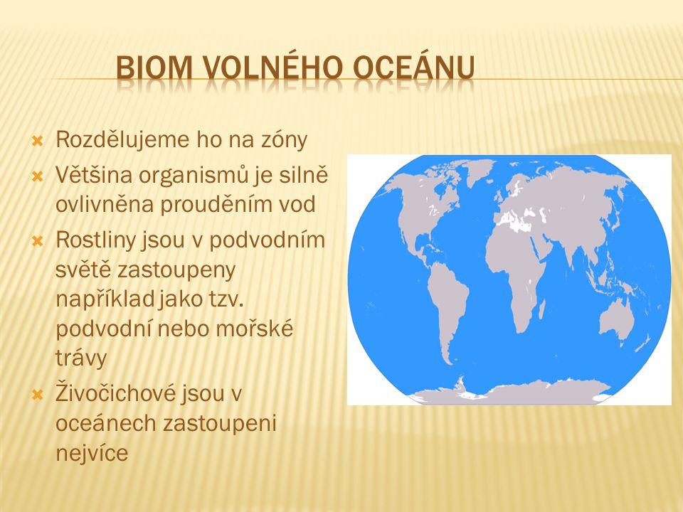 Biom volného oceánu Rozdělujeme ho na zóny