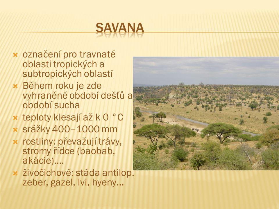 Savana označení pro travnaté oblasti tropických a subtropických oblastí. Během roku je zde vyhraněné období dešťů a období sucha.