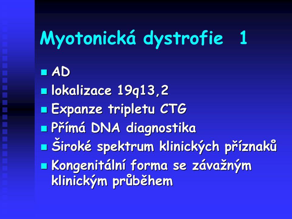 Myotonická dystrofie 1 AD lokalizace 19q13,2 Expanze tripletu CTG