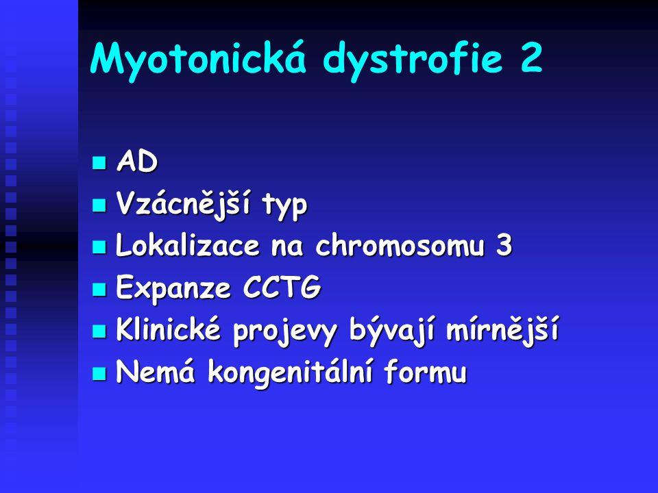 Myotonická dystrofie 2 AD Vzácnější typ Lokalizace na chromosomu 3