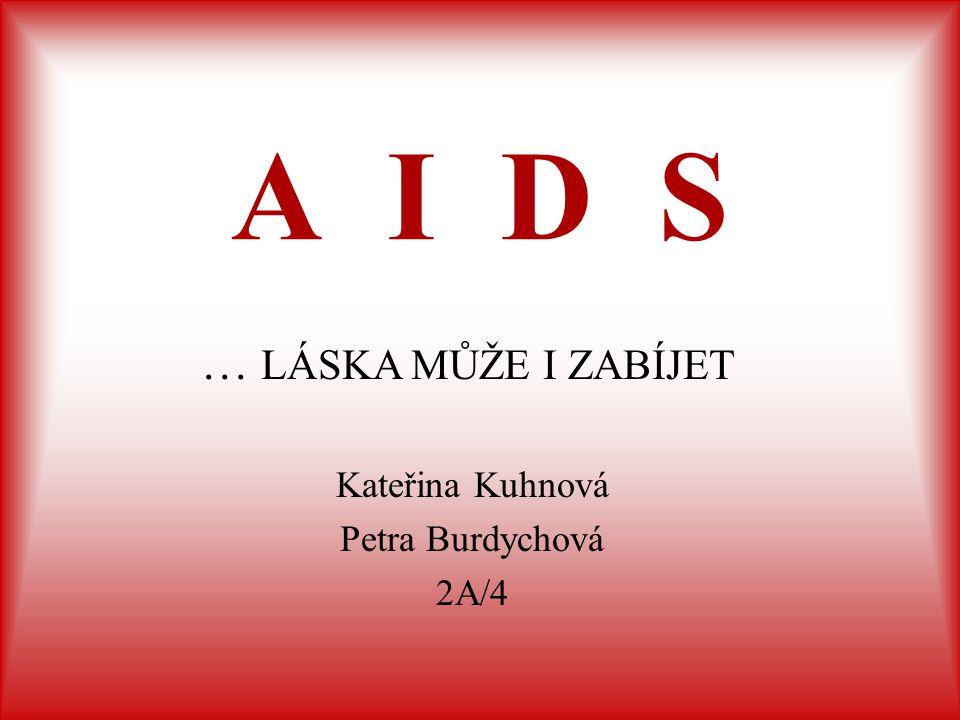 Kateřina Kuhnová Petra Burdychová 2A/4