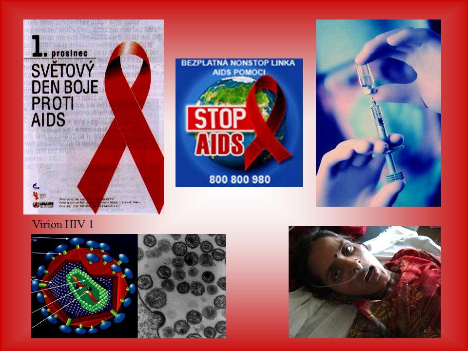 Virion HIV 1