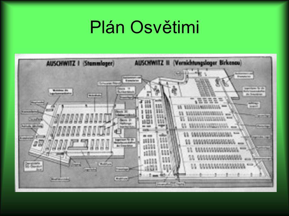 Plán Osvětimi