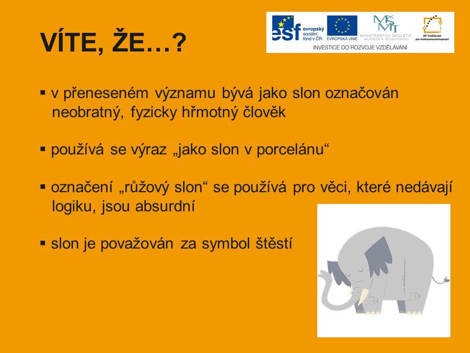 VÍTE, ŽE… v přeneseném významu bývá jako slon označován