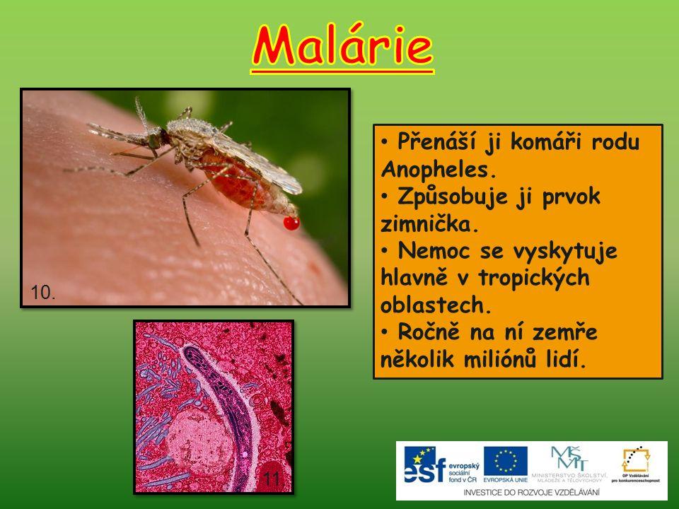 Malárie Přenáší ji komáři rodu Anopheles. Způsobuje ji prvok zimnička.