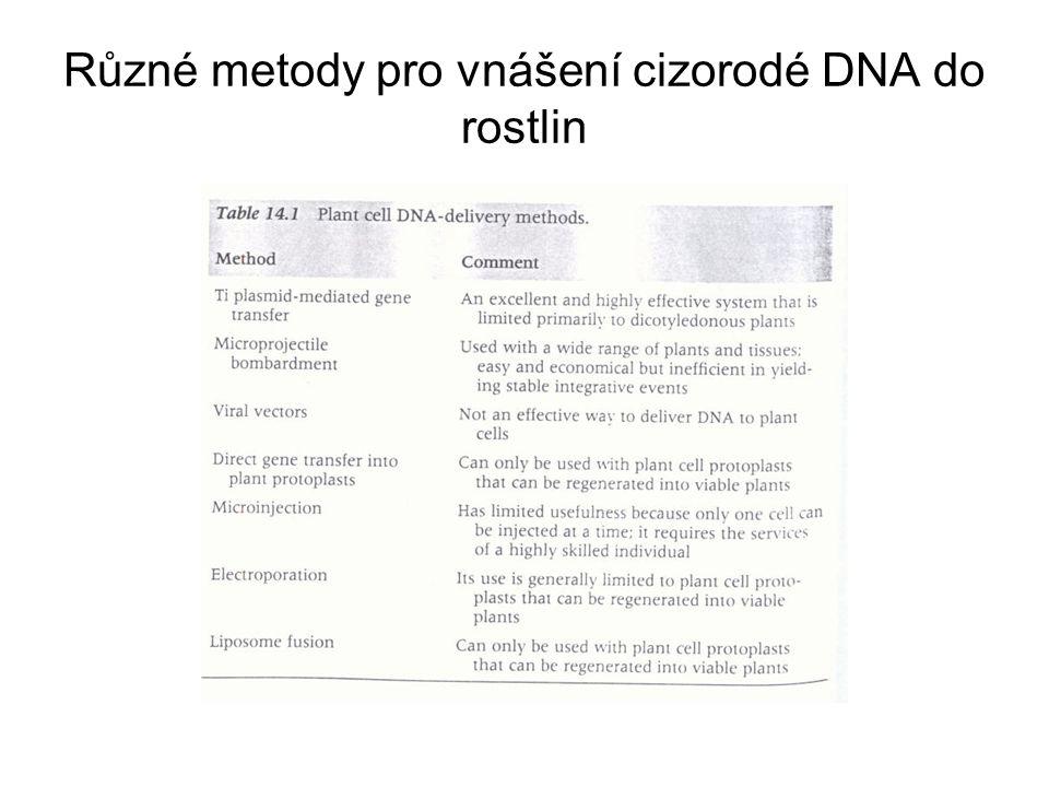 Různé metody pro vnášení cizorodé DNA do rostlin