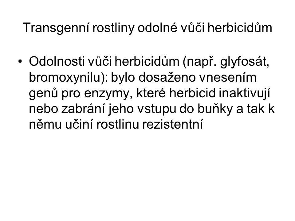 Transgenní rostliny odolné vůči herbicidům