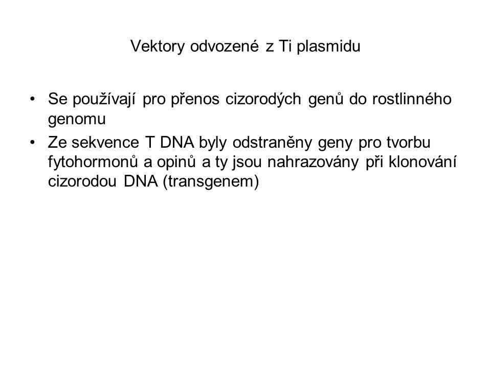 Vektory odvozené z Ti plasmidu