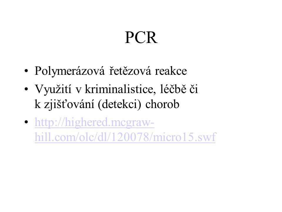 PCR Polymerázová řetězová reakce