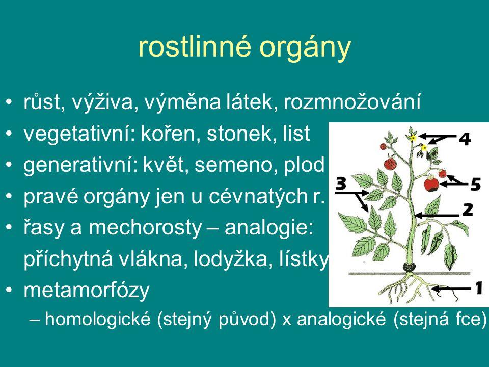 rostlinné orgány růst, výživa, výměna látek, rozmnožování