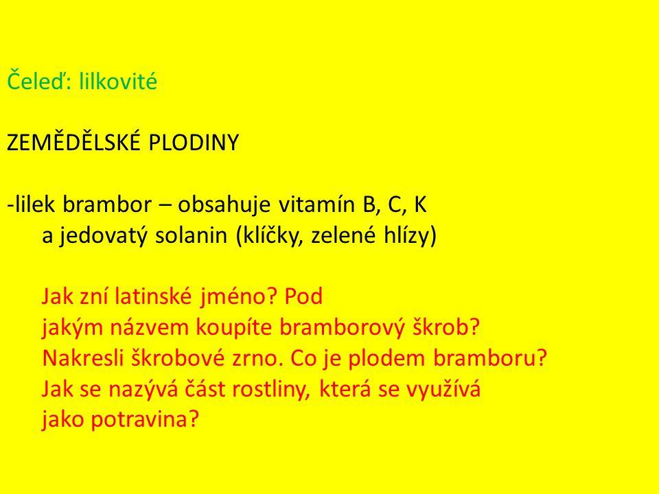Čeleď: lilkovité ZEMĚDĚLSKÉ PLODINY. lilek brambor – obsahuje vitamín B, C, K. a jedovatý solanin (klíčky, zelené hlízy)