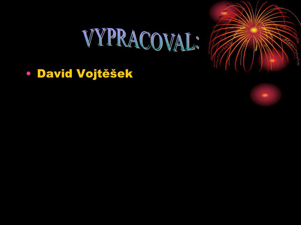 VYPRACOVAL: David Vojtěšek