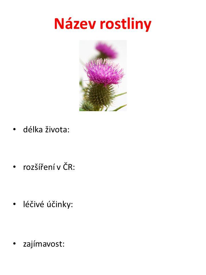 Název rostliny délka života: rozšíření v ČR: léčivé účinky: