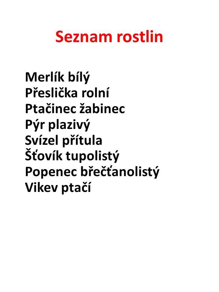 Seznam rostlin Merlík bílý Přeslička rolní Ptačinec žabinec Pýr plazivý Svízel přítula Šťovík tupolistý Popenec břečťanolistý Vikev ptačí.