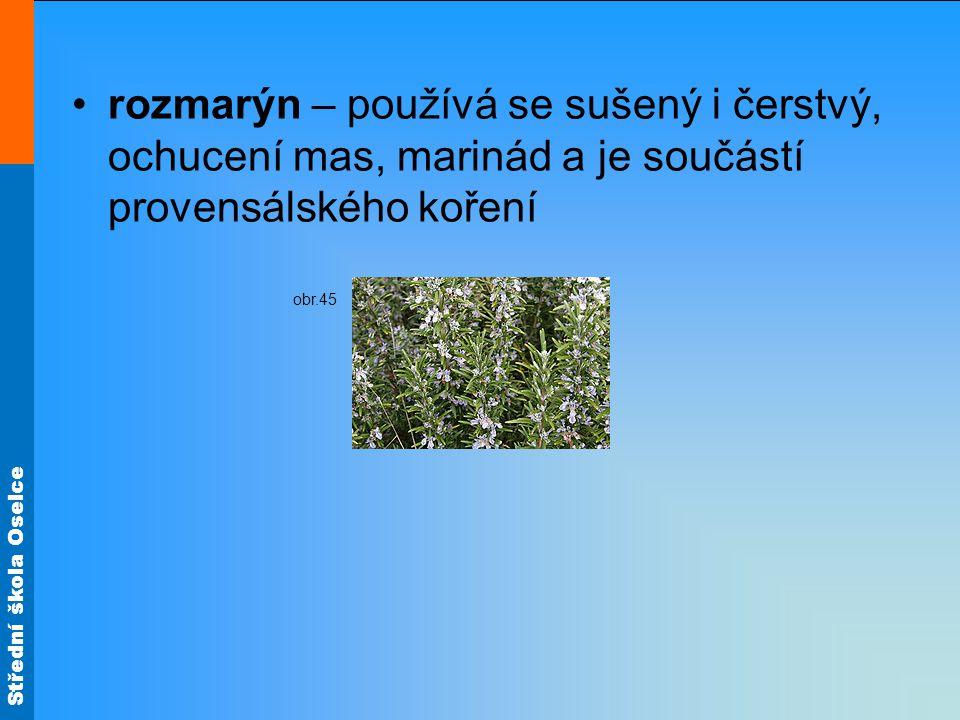 rozmarýn – používá se sušený i čerstvý, ochucení mas, marinád a je součástí provensálského koření