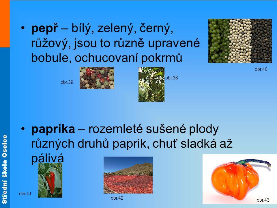 pepř – bílý, zelený, černý, růžový, jsou to různě upravené bobule, ochucovaní pokrmů