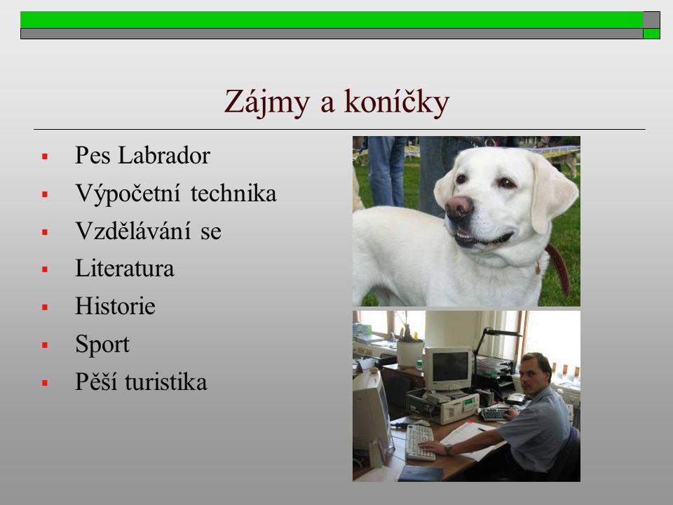 Zájmy a koníčky Pes Labrador Výpočetní technika Vzdělávání se