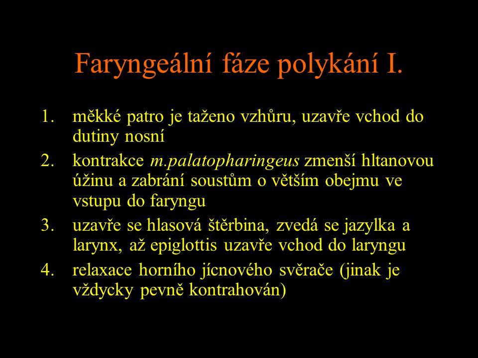 Faryngeální fáze polykání I.