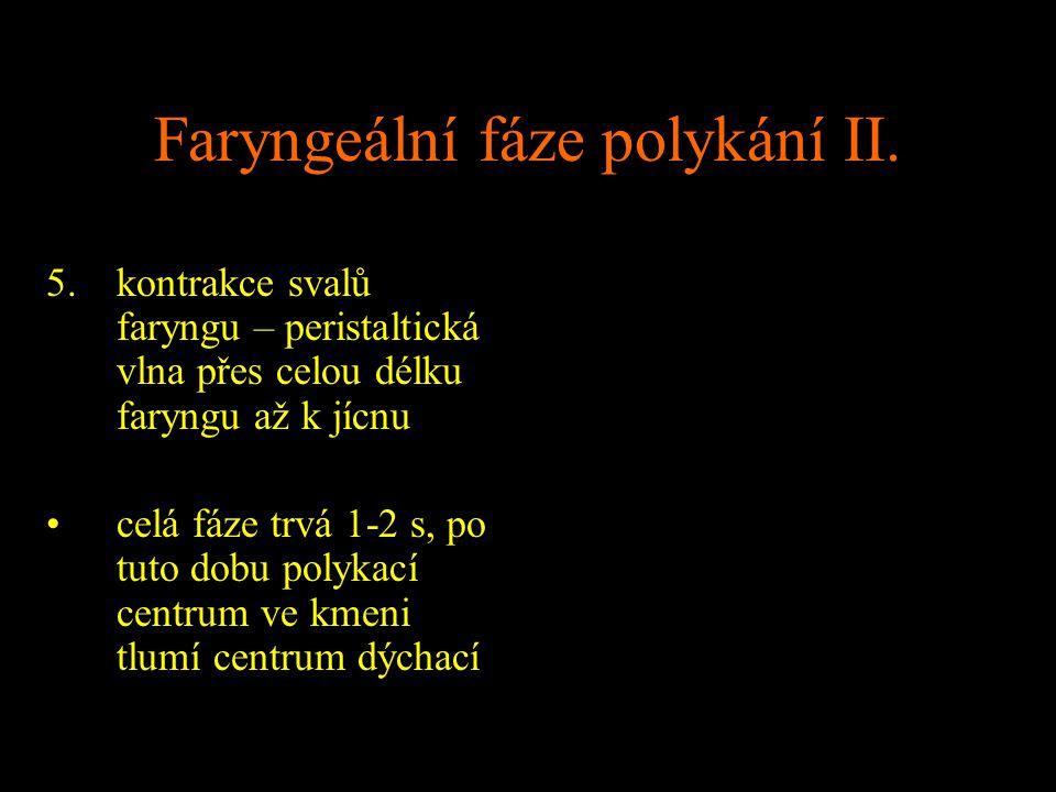 Faryngeální fáze polykání II.