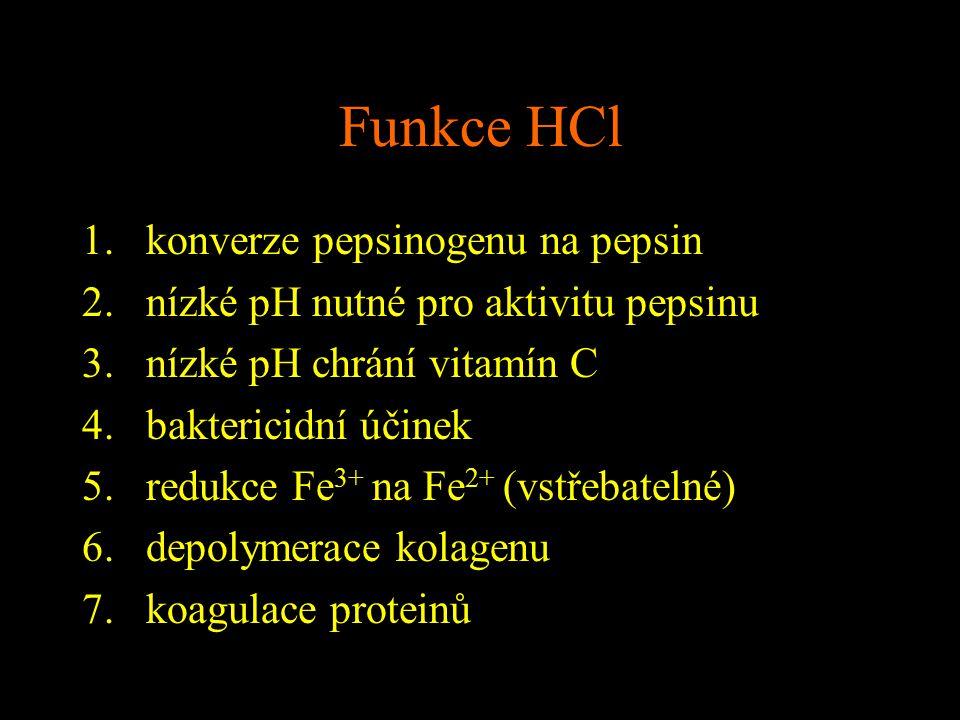 Funkce HCl konverze pepsinogenu na pepsin