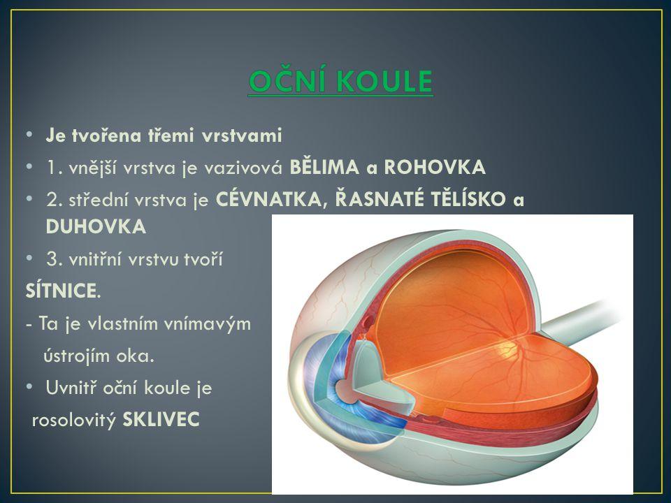 OČNÍ KOULE Je tvořena třemi vrstvami