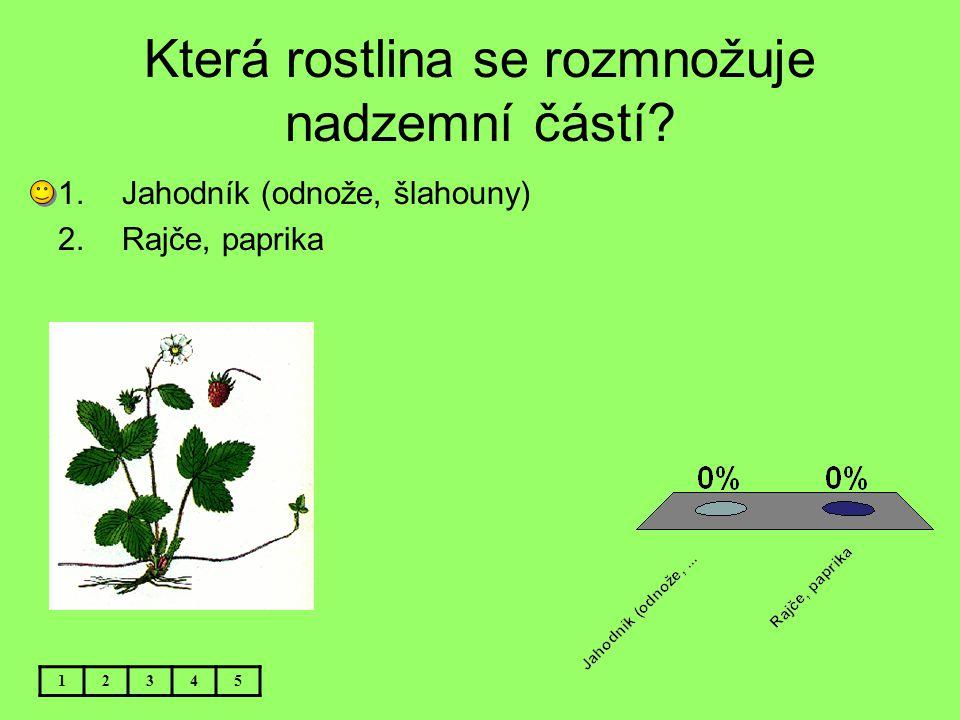 Která rostlina se rozmnožuje nadzemní částí