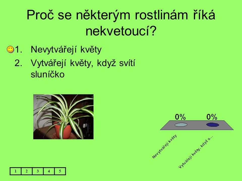 Proč se některým rostlinám říká nekvetoucí