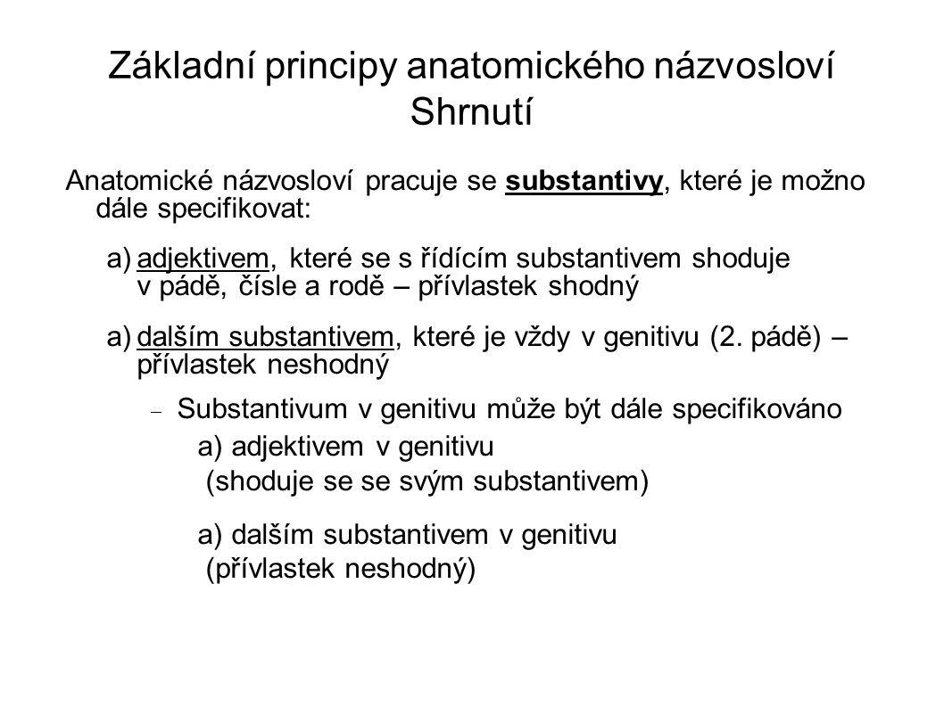 Základní principy anatomického názvosloví Shrnutí