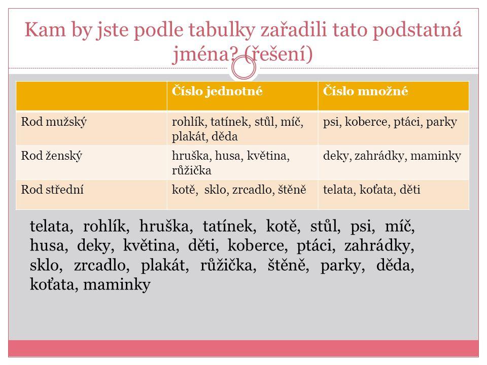 Kam by jste podle tabulky zařadili tato podstatná jména (řešení)