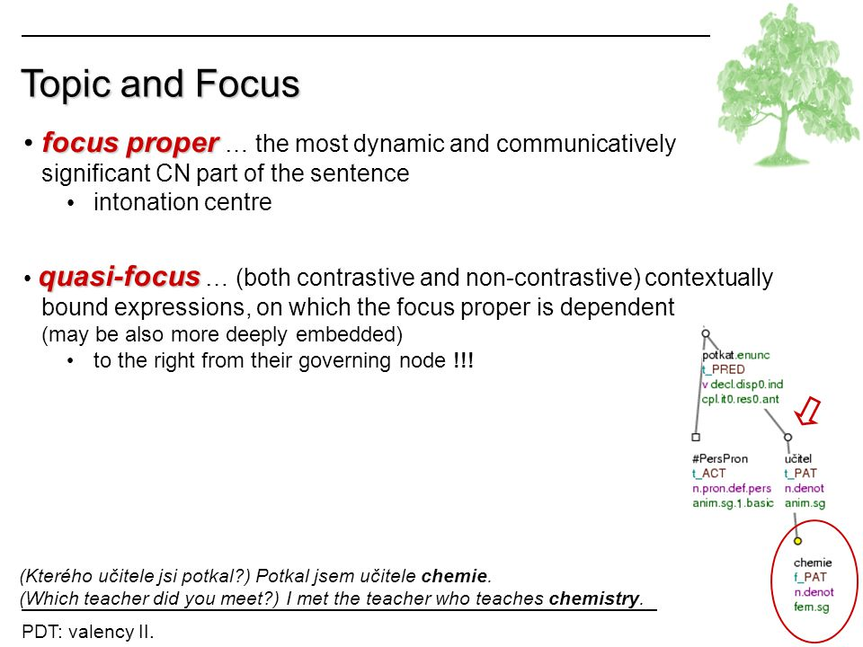 Topic and Focus focus proper … the most dynamic and communicatively