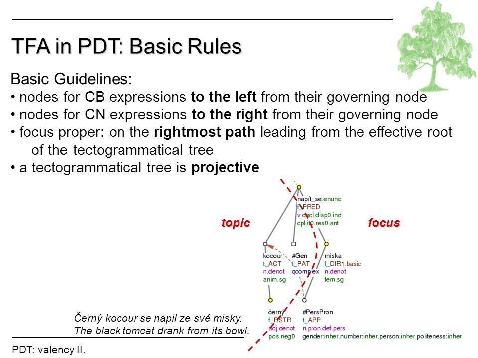 TFA in PDT: Basic Rules Basic Guidelines: