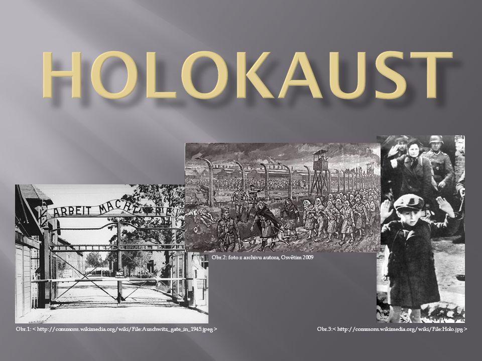 HOLOKAUST Obr.2: foto z archivu autora, Osvětim 2009