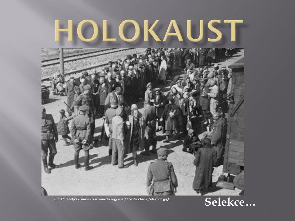 HOLOKAUST Selekce… Obr.17: <http://commons.wikimedia.org/wiki/File:Auschwiz_Selektion.jpg>