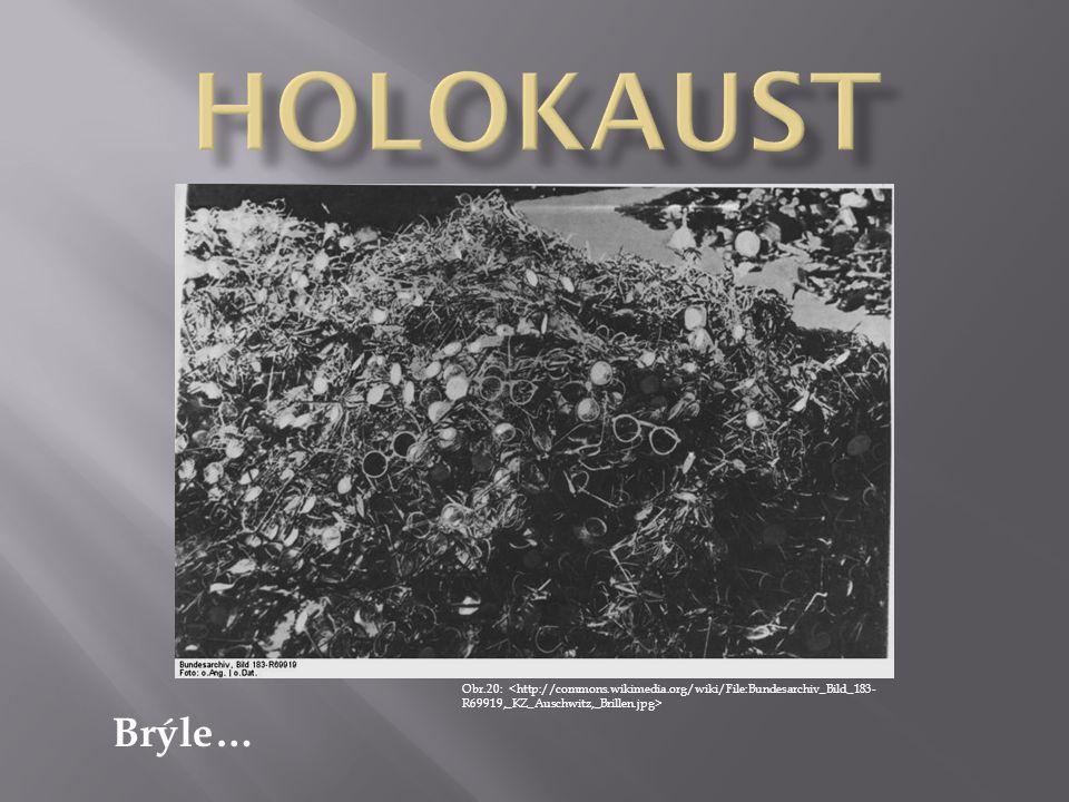HOLOKAUST Obr.20: <http://commons.wikimedia.org/wiki/File:Bundesarchiv_Bild_183-R69919,_KZ_Auschwitz,_Brillen.jpg>