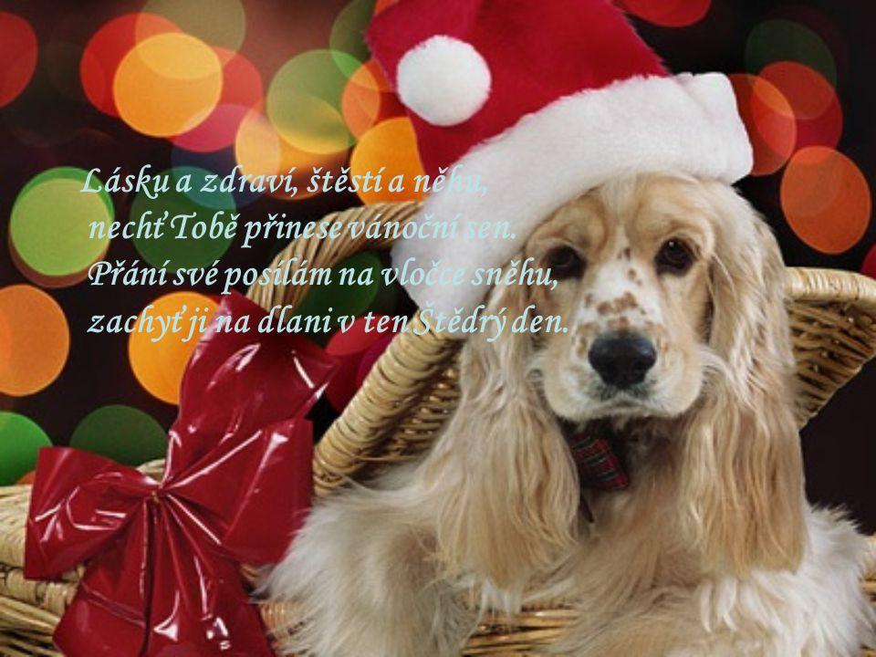 Lásku a zdraví, štěstí a něhu, nechť Tobě přinese vánoční sen