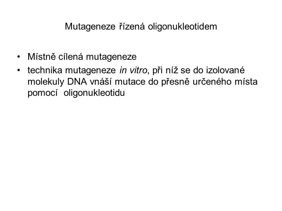 Mutageneze řízená oligonukleotidem