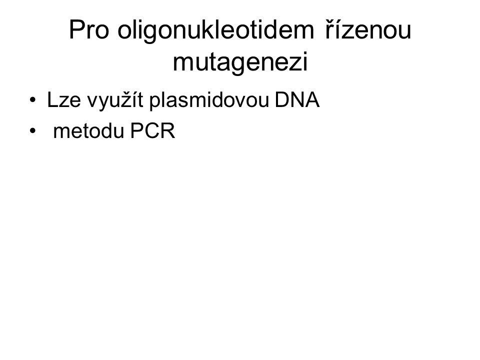 Pro oligonukleotidem řízenou mutagenezi
