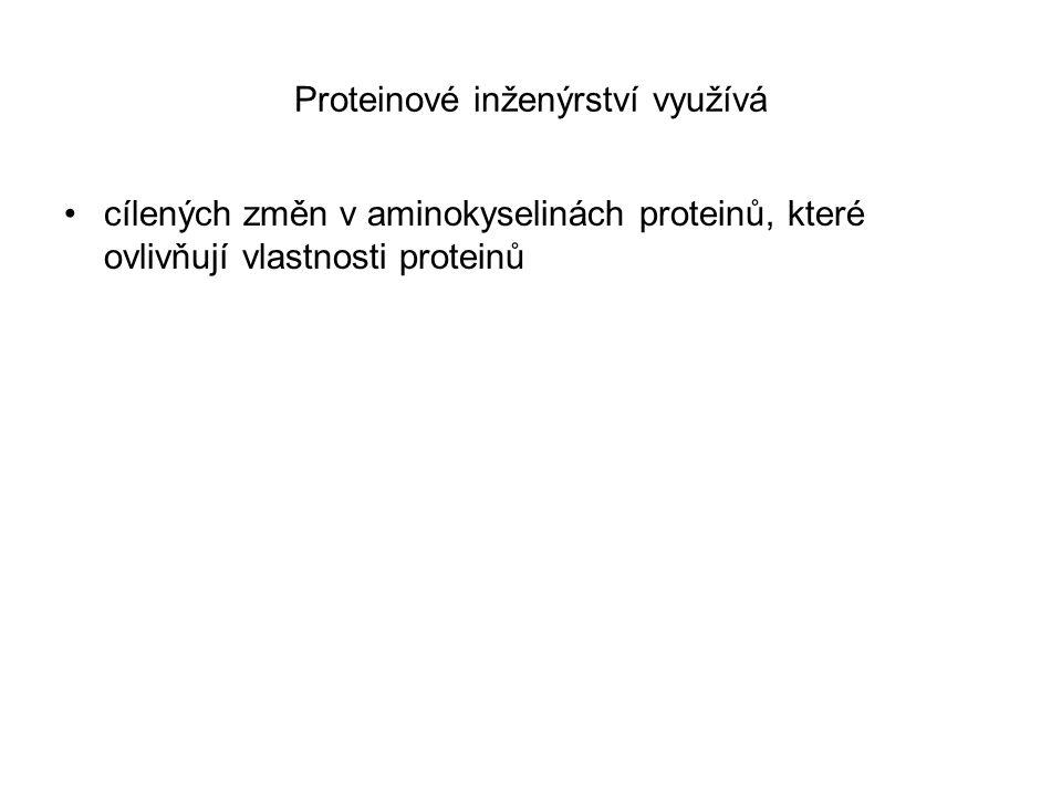 Proteinové inženýrství využívá
