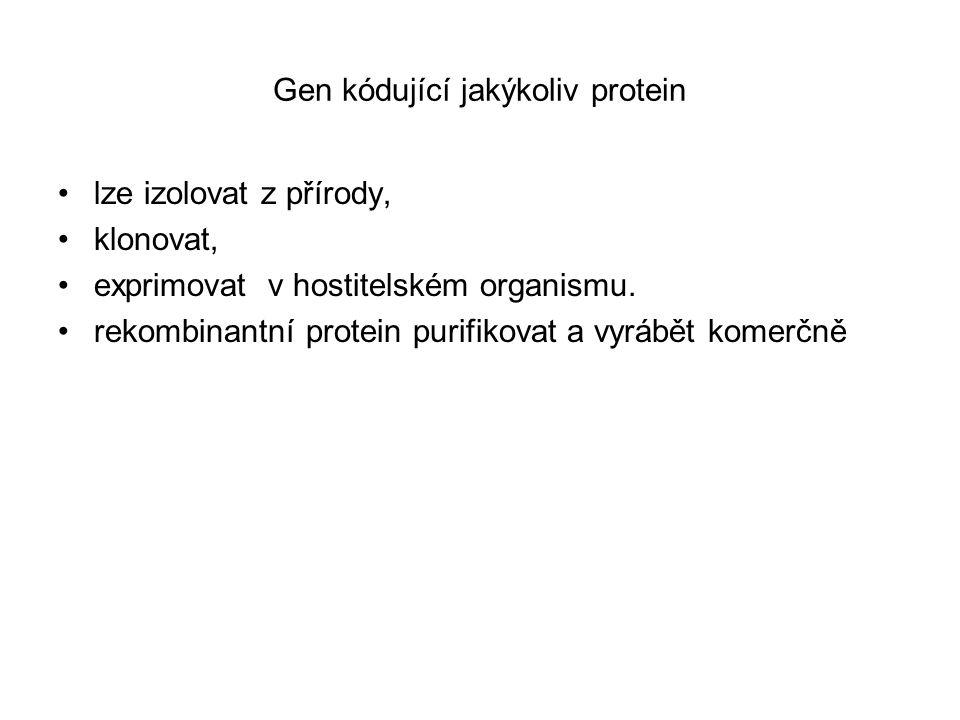 Gen kódující jakýkoliv protein