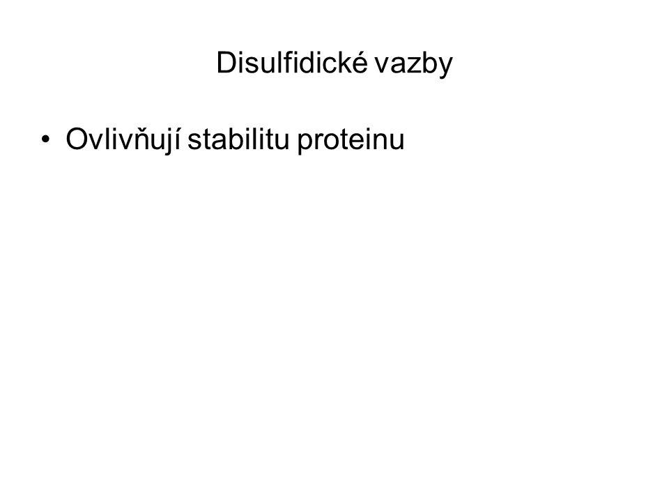 Disulfidické vazby Ovlivňují stabilitu proteinu