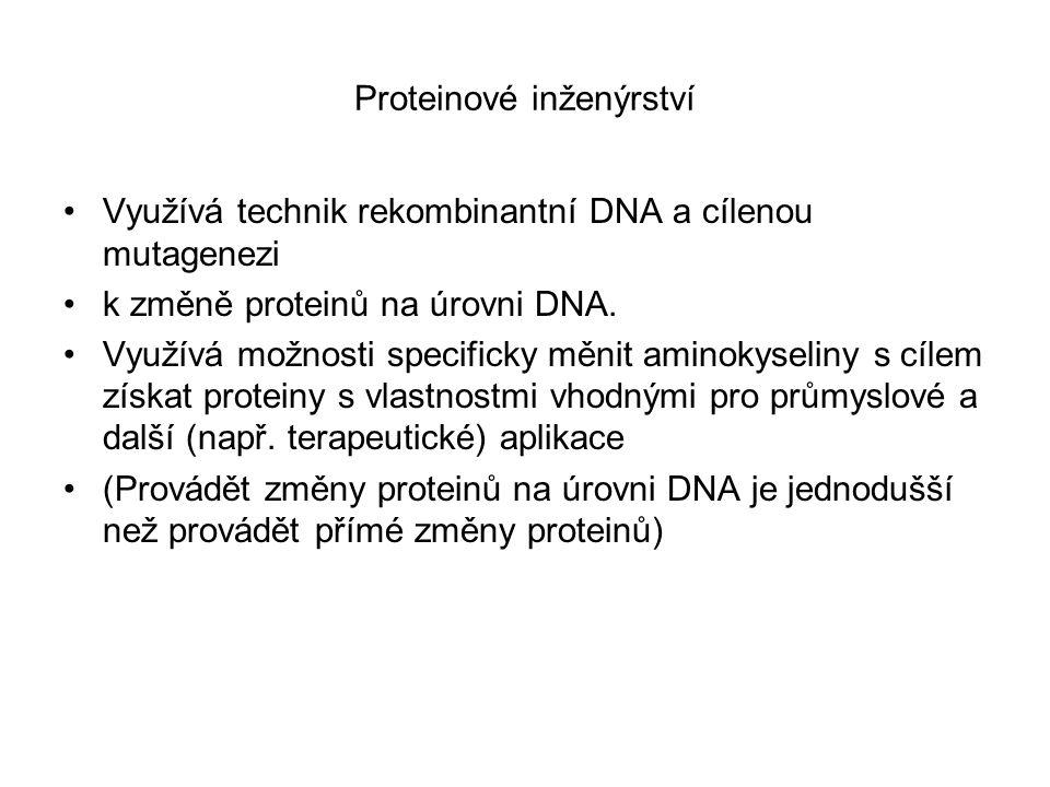 Proteinové inženýrství