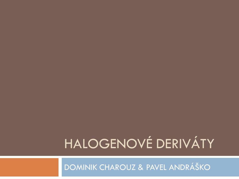 DOMINIK CHAROUZ & PAVEL ANDRÁŠKO