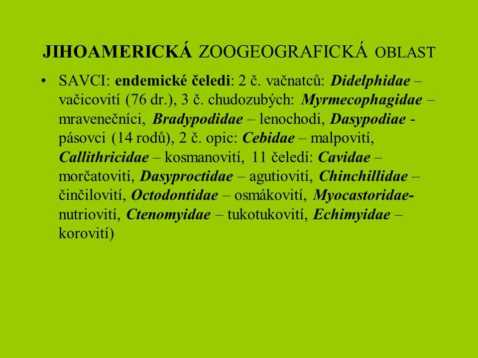 JIHOAMERICKÁ ZOOGEOGRAFICKÁ OBLAST