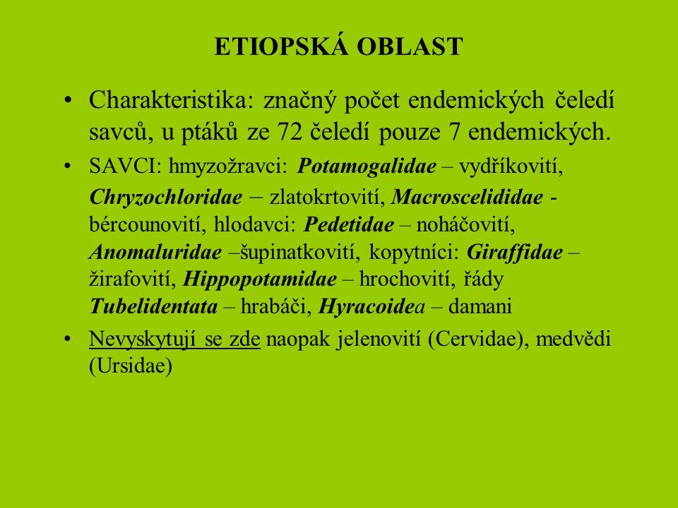 ETIOPSKÁ OBLAST Charakteristika: značný počet endemických čeledí savců, u ptáků ze 72 čeledí pouze 7 endemických.