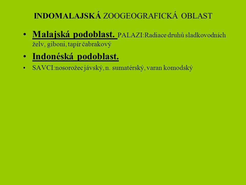 INDOMALAJSKÁ ZOOGEOGRAFICKÁ OBLAST