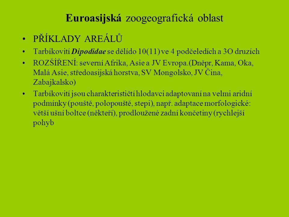 Euroasijská zoogeografická oblast
