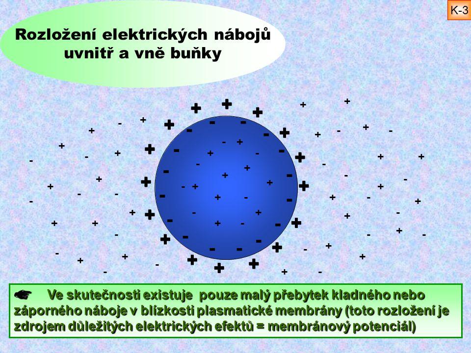 Rozložení elektrických nábojů