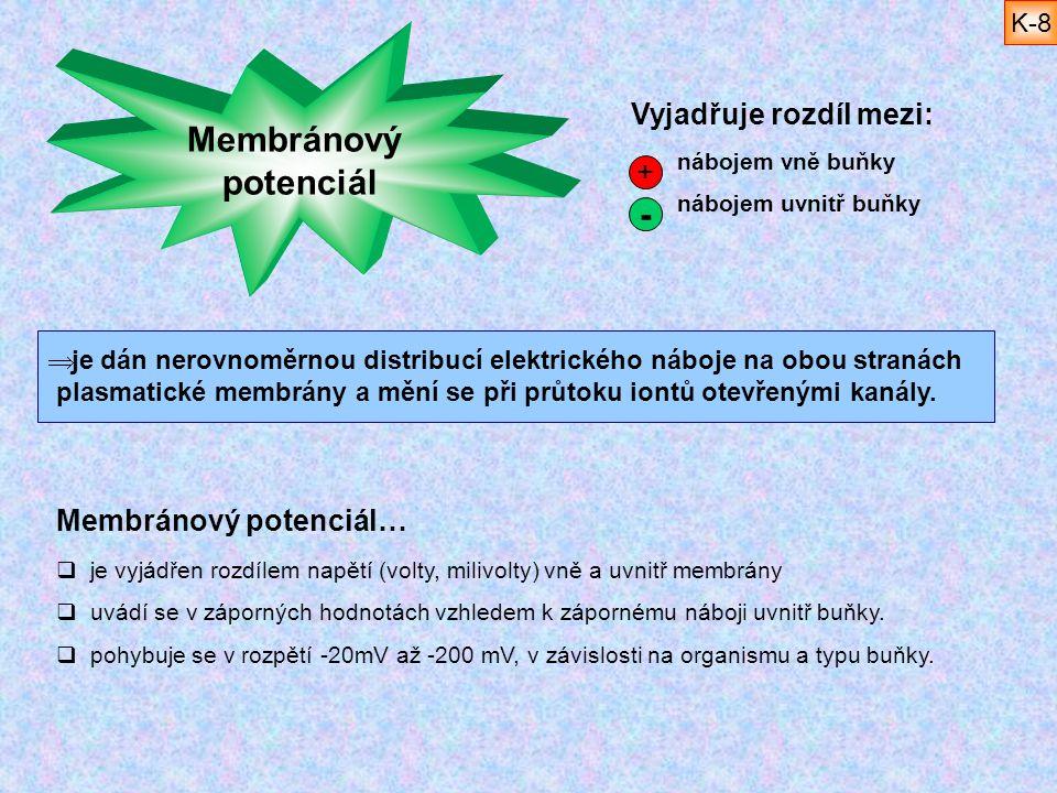 Membránový potenciál -