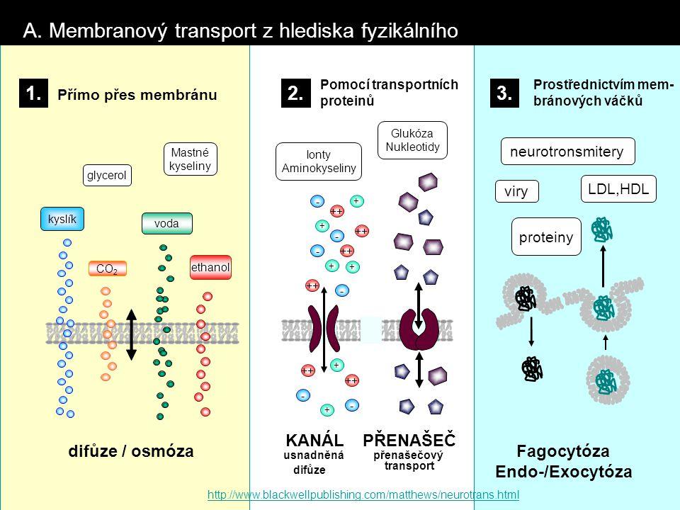 A. Membranový transport z hlediska fyzikálního